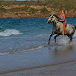 horse ride in bolonia beach