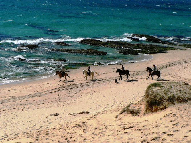 Horse ride on the beach, Bolonia.