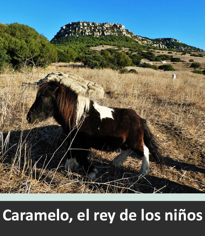 Caramelo, der König der Kinder